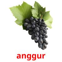 anggur picture flashcards
