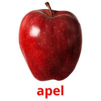 apel picture flashcards