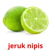 jeruk nipis picture flashcards