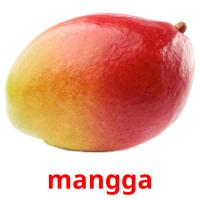 mangga picture flashcards