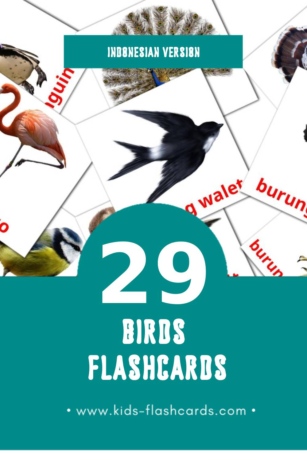 Visual Burung Flashcards for Toddlers (29 cards in Indonesian)