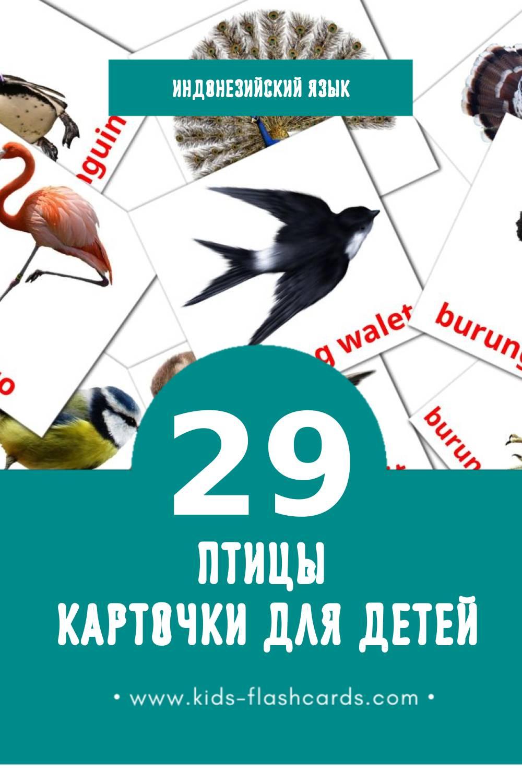 """""""Burung"""" - Визуальный Индонезийском Словарь для Малышей (29 картинок)"""