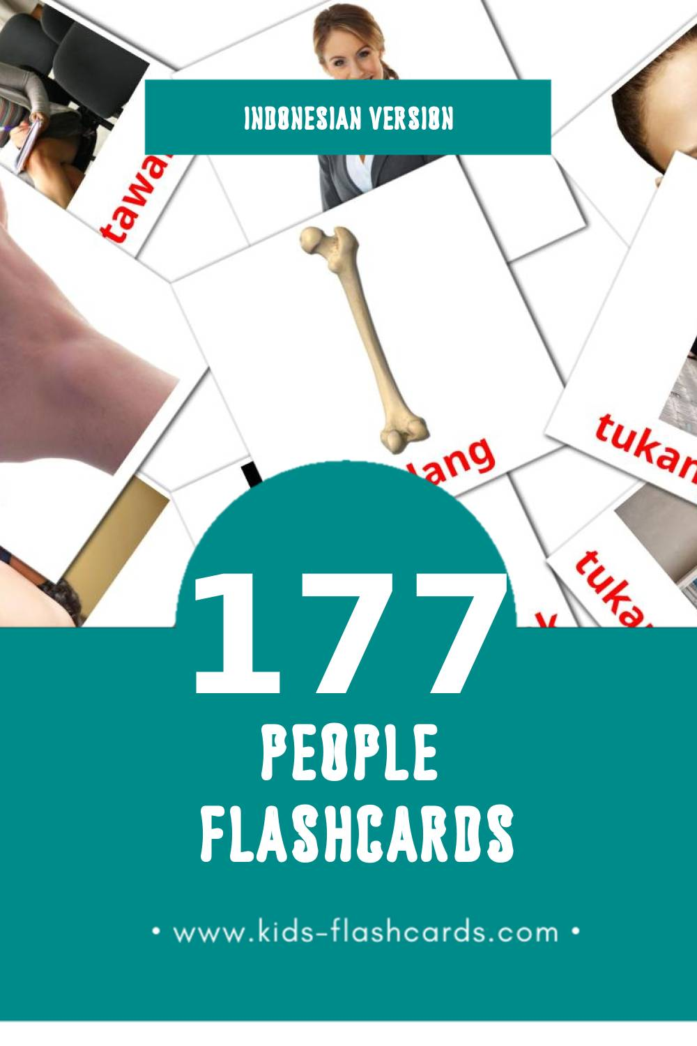 Visual Manusia Flashcards for Toddlers (58 cards in Indonesian)