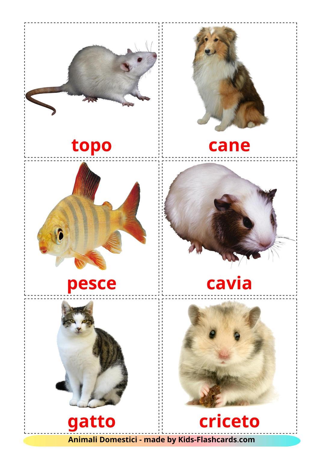 Domestic animals - 10 Free Printable italian Flashcards