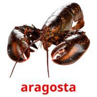 aragosta picture flashcards