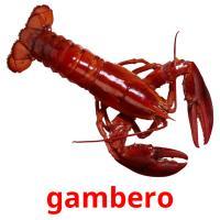 gambero picture flashcards