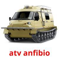 atv anfibio picture flashcards