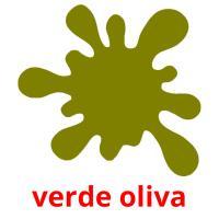 verde oliva picture flashcards