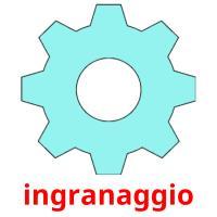 ingranaggio picture flashcards