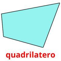 quadrilatero picture flashcards