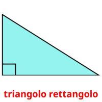 triangolo rettangolo picture flashcards