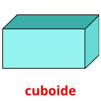 cuboide picture flashcards