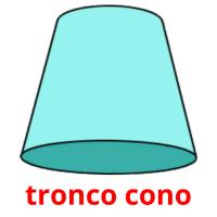 tronco cono picture flashcards