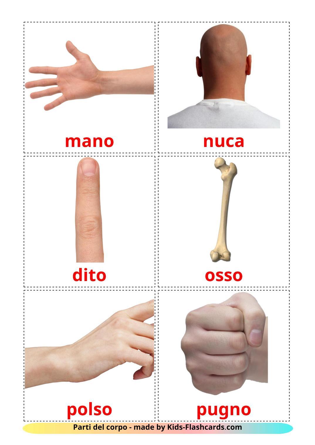 Body Parts - 26 Free Printable italian Flashcards