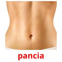 pancia picture flashcards