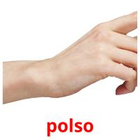 polso picture flashcards