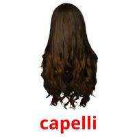 capelli picture flashcards