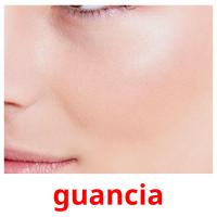 guancia picture flashcards