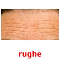 rughe picture flashcards