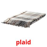 plaid picture flashcards
