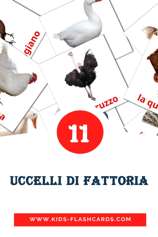 11 Uccelli da fattoria Picture Cards for Kindergarden in italian