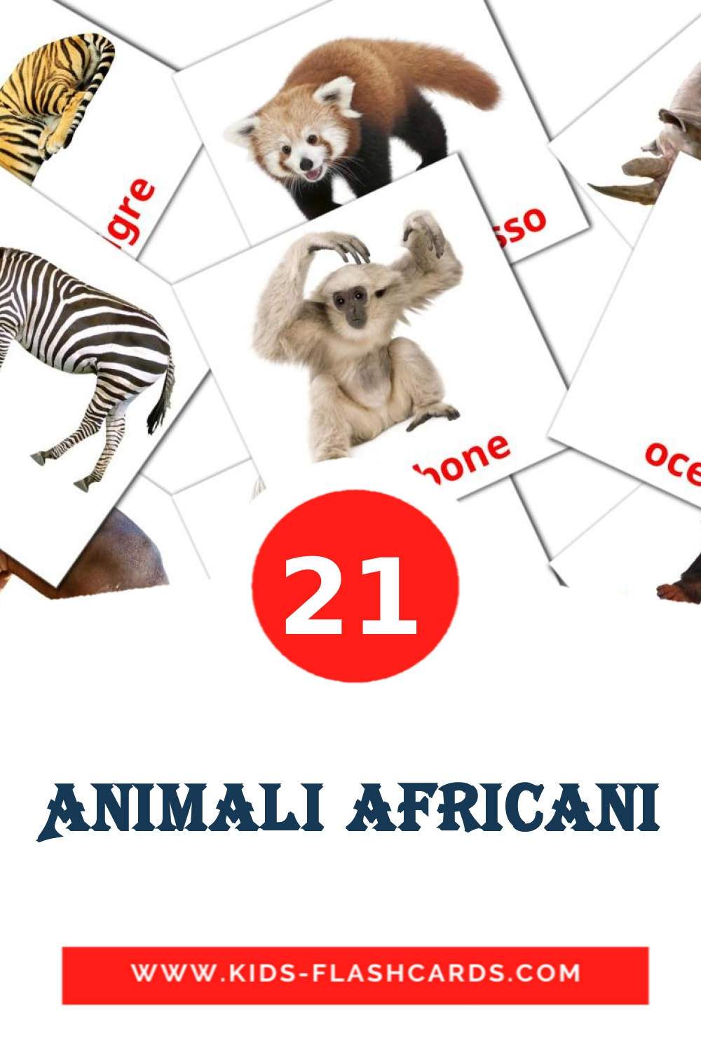 21 Animali africani Picture Cards for Kindergarden in italian