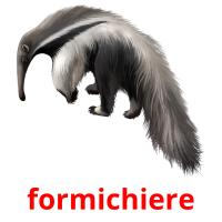 formichiere picture flashcards