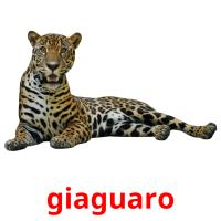 giaguaro picture flashcards