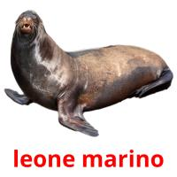 leone marino picture flashcards