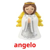 angelo picture flashcards