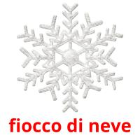 fiocco di neve picture flashcards