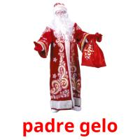 padre gelo picture flashcards