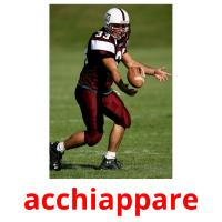acchiappare picture flashcards