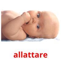 allattare picture flashcards