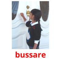 bussare picture flashcards