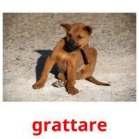 grattare picture flashcards