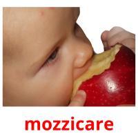 mozzicare picture flashcards
