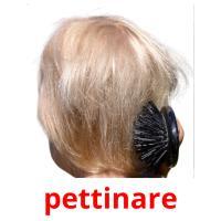 pettinare picture flashcards