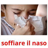 soffiare il naso picture flashcards