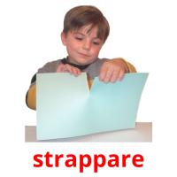 strappare picture flashcards