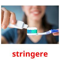 stringere picture flashcards