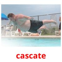 cascate picture flashcards