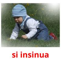 si insinua picture flashcards