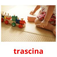 trascina picture flashcards
