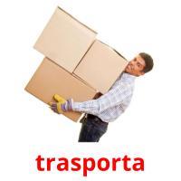 trasporta picture flashcards