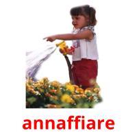 annaffiare picture flashcards