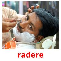 radere picture flashcards