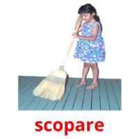 scopare picture flashcards