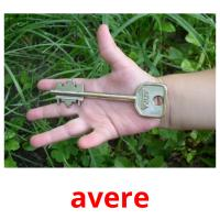 avere picture flashcards