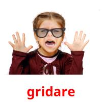 gridare picture flashcards